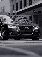 Audi (black)