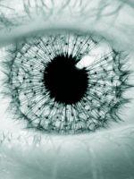 The Eye of Fut...