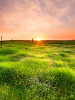 Horizon Sunrise