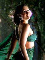 Kareena in Sari