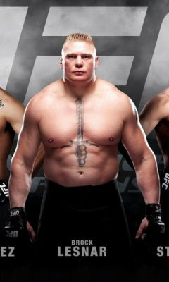 Ufc-Mma-Mixed-Fighters