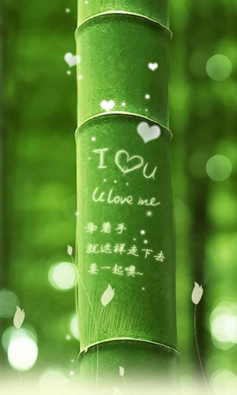 I love you (Green Bamboo)