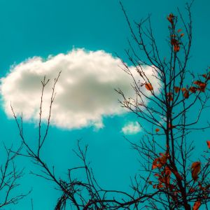 Hd Wallpapers White Cloud Samsung Galaxy S  High Resolution Wallpapers Widescreen
