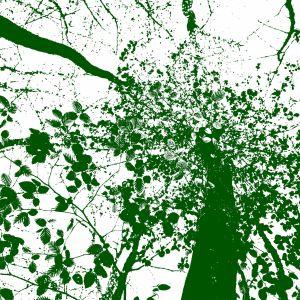 Hd Wallpapers Green Tree Art Samsung Galaxy S  Wallpaper Hd