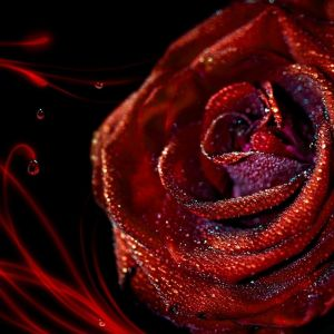 My Sony Xperia Z Wallpaper HD Love