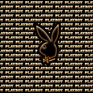 Playboy Bunny Android Mobile Phone Wallpaper HD     X