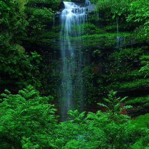 Baby Waterfall Wallpaper