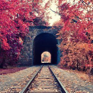 Galaxy S  Wallpaper HD Seasons Autumn Armenia Yerevan Railway Park