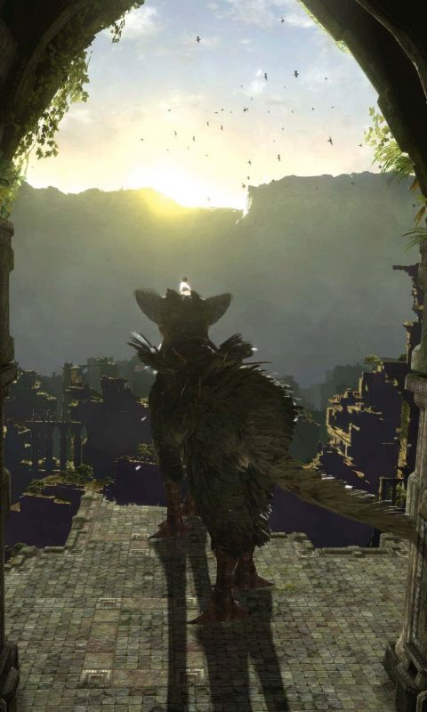 The Last Guardian Wallpaper For IPhone HD