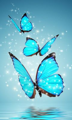 Blue Butterflies