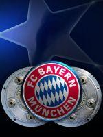 Bayern Munich Germany Champions League Soccer Flag       X