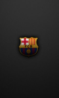 Sports Logos FC Barcelona Football Not Soccer     X