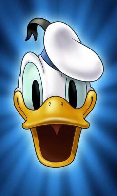 Donald Duck Cartoon Mobile Wallpaper     X
