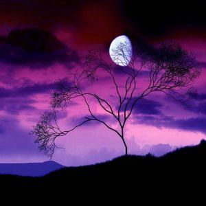Dark Moon Purple Sky Hd Wallpaper Hd Nature Photo Moon Hd Wallpaper