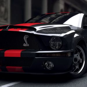 Mustang High Definition Wallpaper