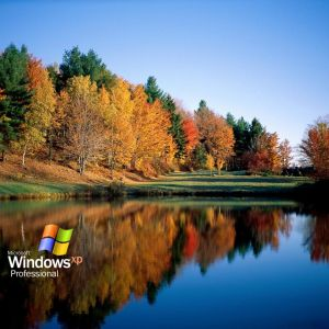 Windows Xp Nature Wallpapers          X