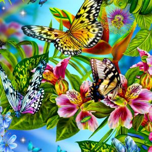 Free Abstract Butterfly      Wallpaper HD