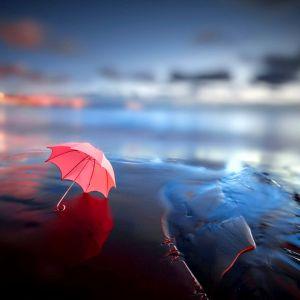 Lonely Umbrella Wallpaper