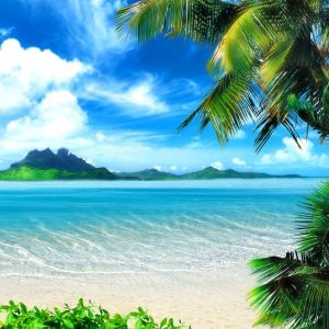 Summer Tropical Beach Wallpaper