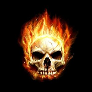 Fire Art Flaming Skull
