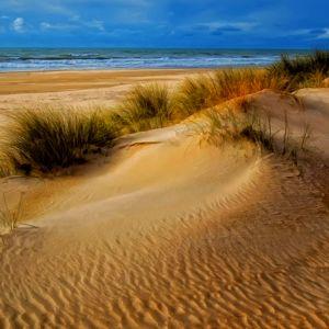 Galaxy S  Active Wallpapaper Beach Landscape