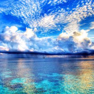 Galaxy S  Active HD Paradise Wallpaper
