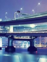 Tokyo Bridge Beautiful           X