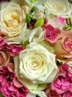 Roses Flowers Bouquet Decoration Beautiful           X