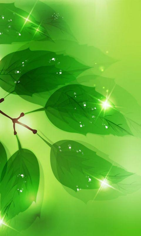 Hd Wallpapers Green Leaves Vector Desktop Wallpaper Plant     X    Wallpaper