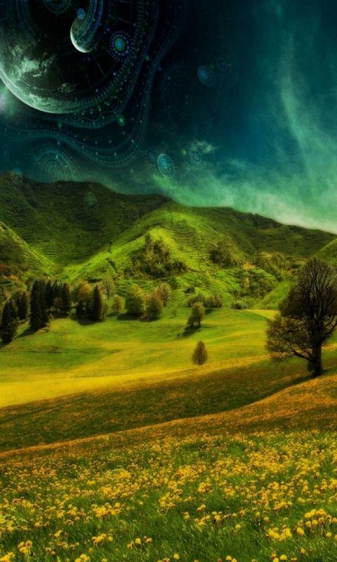 Hill Nature Wallpaper