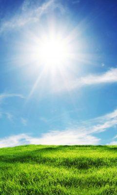 Sunshine And Grass IPhone   Plus Wallpaper Ilikewallpaper Com