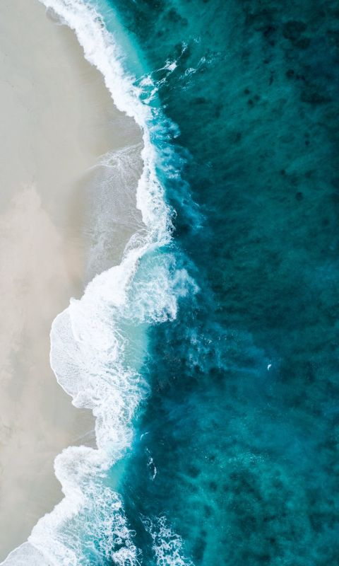 aerial photo of seashore wallpaper
