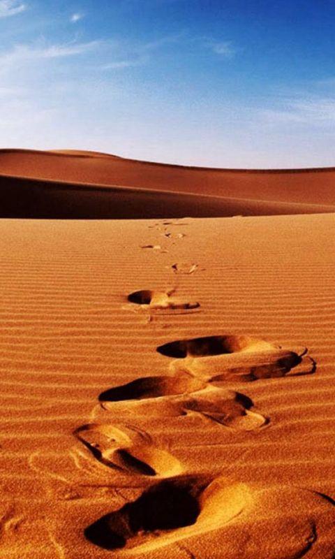 Nature Sunlight Bright Desert Landscape wallpaper