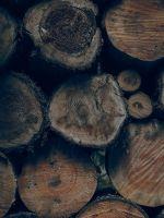 brown wood slice lot wallpaper