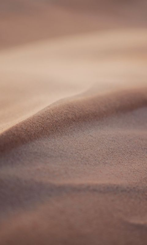 Your first guess might have been a desert the seco... wallpaper