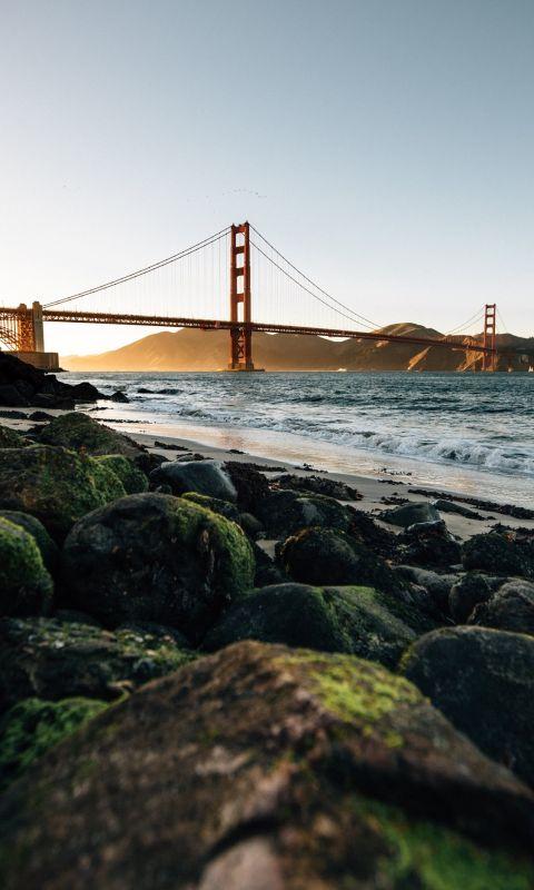 Golden Gate Bridge San Francisco at daytime wallpaper