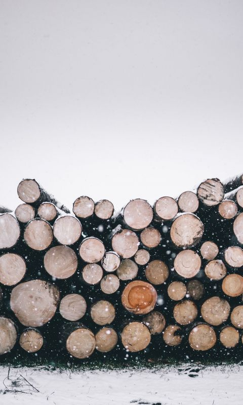 pile of wood logs wallpaper