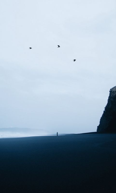 Reynisfjara Black Sand Beach wallpaper