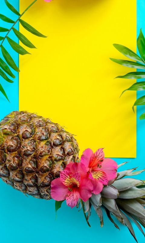 1500x2592 Summer Wallpaper Tropical Fruit Wallpape... wallpaper