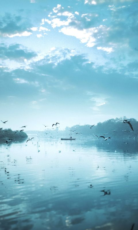 birds flying near body of water under cloudy sky d... wallpaper