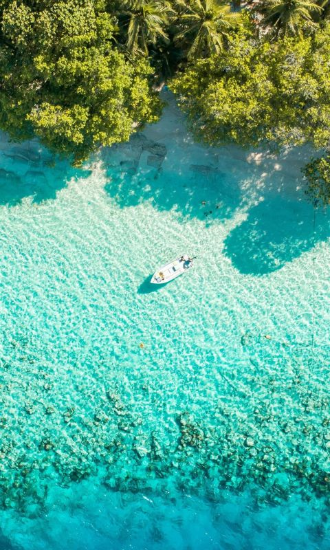 boat near shore wallpaper