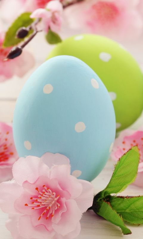 Easter eggs Flowers 5K Celebrations 5569 wallpaper
