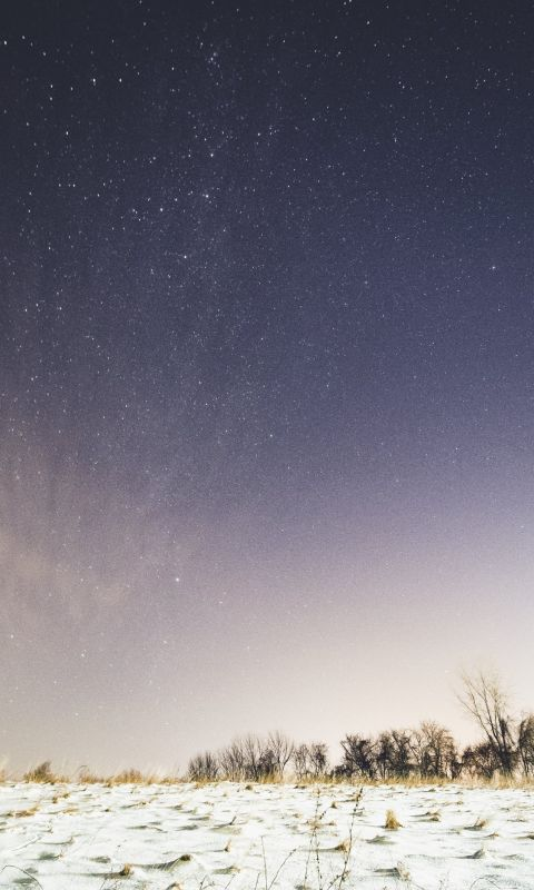 snow covered ground under sky full of stars wallpaper
