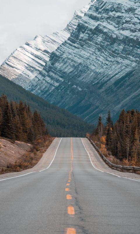 gray concrete road between trees near mountain wallpaper