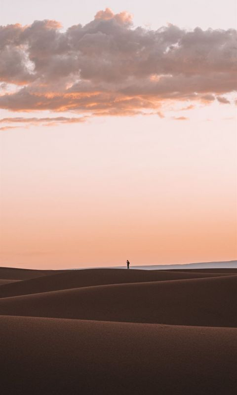 silhouette of person standing on desert wallpaper