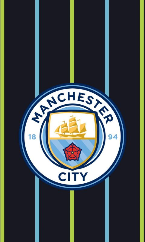 Tottenham Vs Manchester City Champions League HD wallpaper